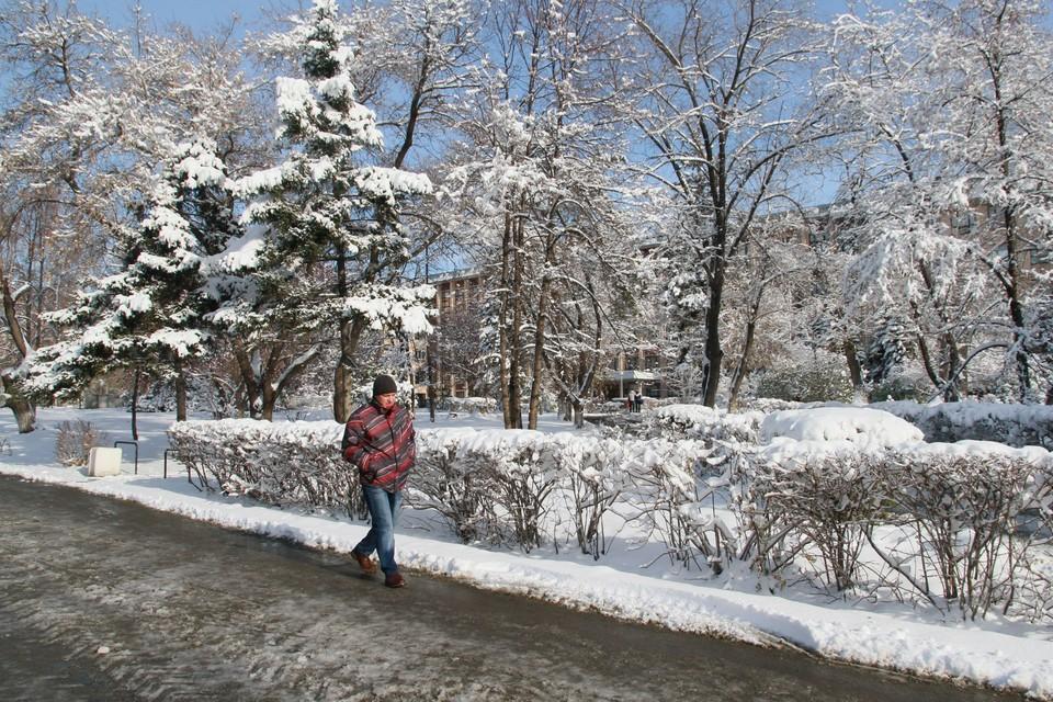 Погода в Алтайском крае в феврале 2021 года