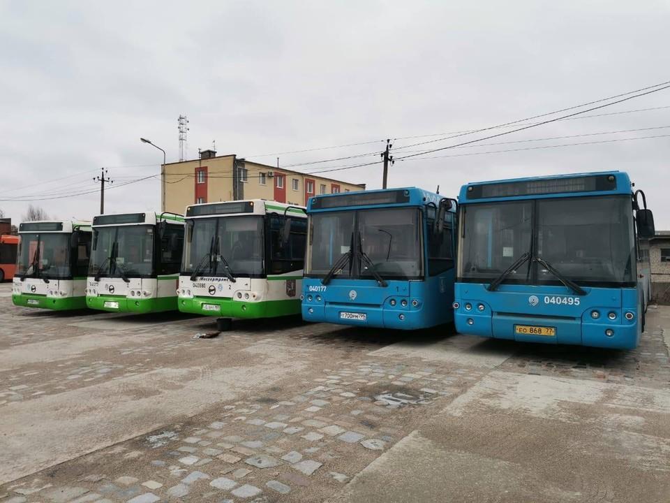 Автобусы, подаренные Калининграду столичными чиновниками, вот-вот начнут обслуживать пассажиров.