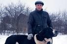 «Пошла с детьми гулять, а на улице - огромные собаки»: Деревня под Чеховом взбунтовалась против заводчика, поселившего на участке 30 алабаев