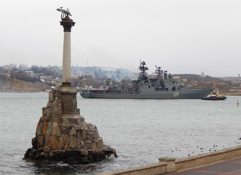 На побережье Черного моря нет трупов пернатых.