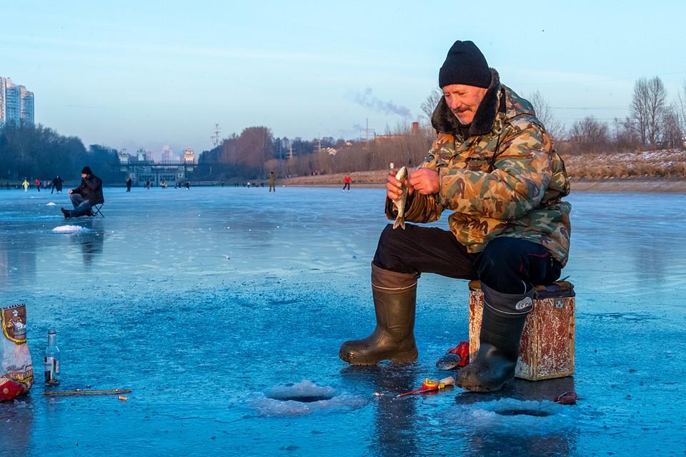 Больше всего рыбы, как обычно, в Москве-реке. Самые многочисленные виды - плотва, лещ, окунь, уклея, окунь, судак