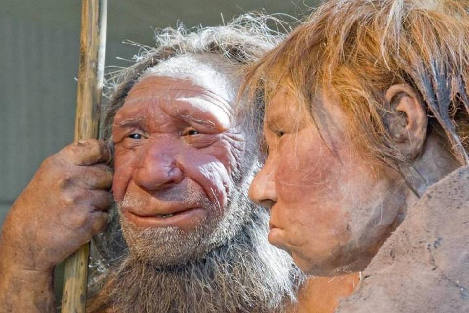 Вредное излучение загнало неандертальцев в пещеры.