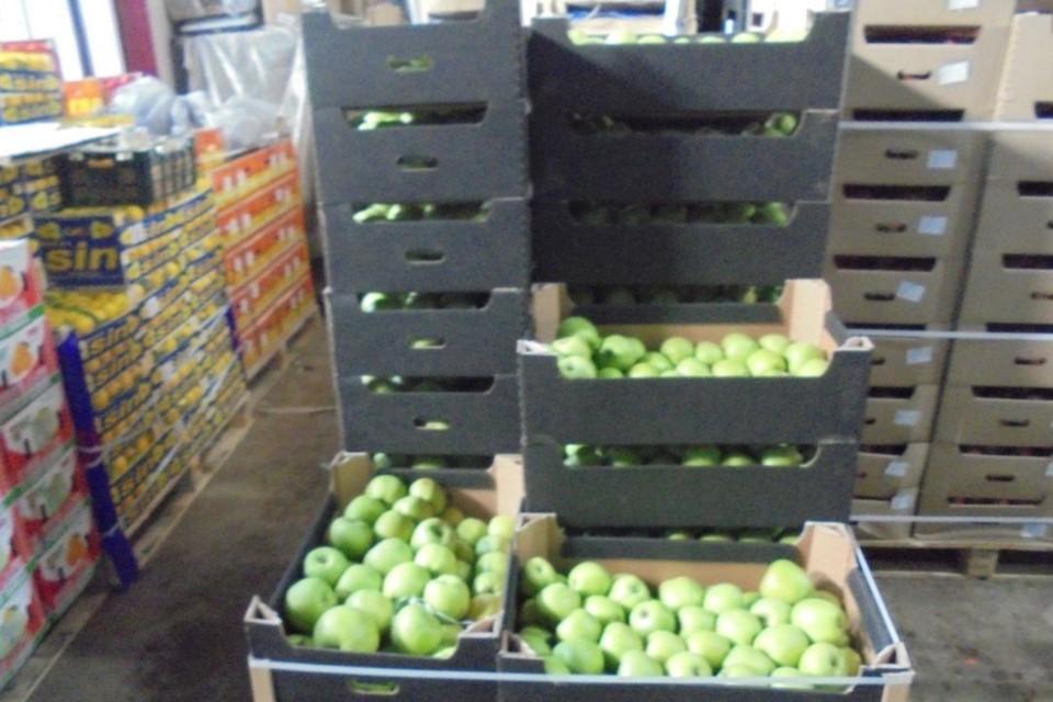 Яблоки находились в картонных коробках, на которых отсутствовала маркировка. Фото: rshn43.ru