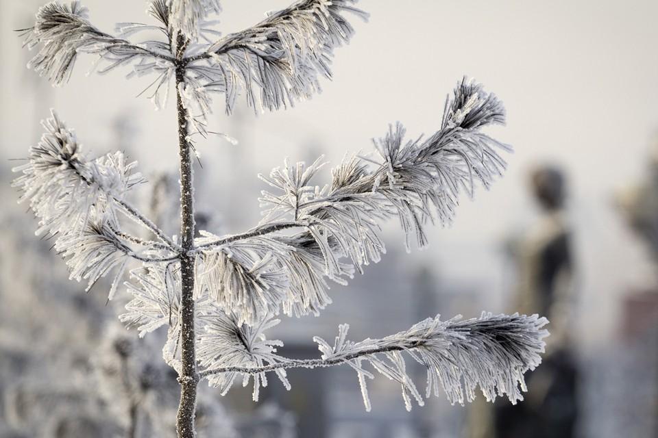 Погода в Иркутске: 21 февраля ветер 10 м/с