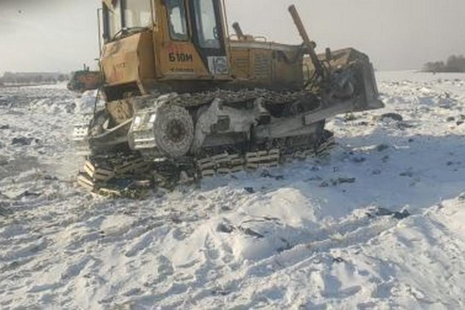 В Красноярске под бульдозер пустили больше тонны бельгийских груш. Фото: пресс-служба Россельхознадзора