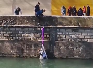 Храбрая сердцем: девушка спасла собаку из реки в Сочи