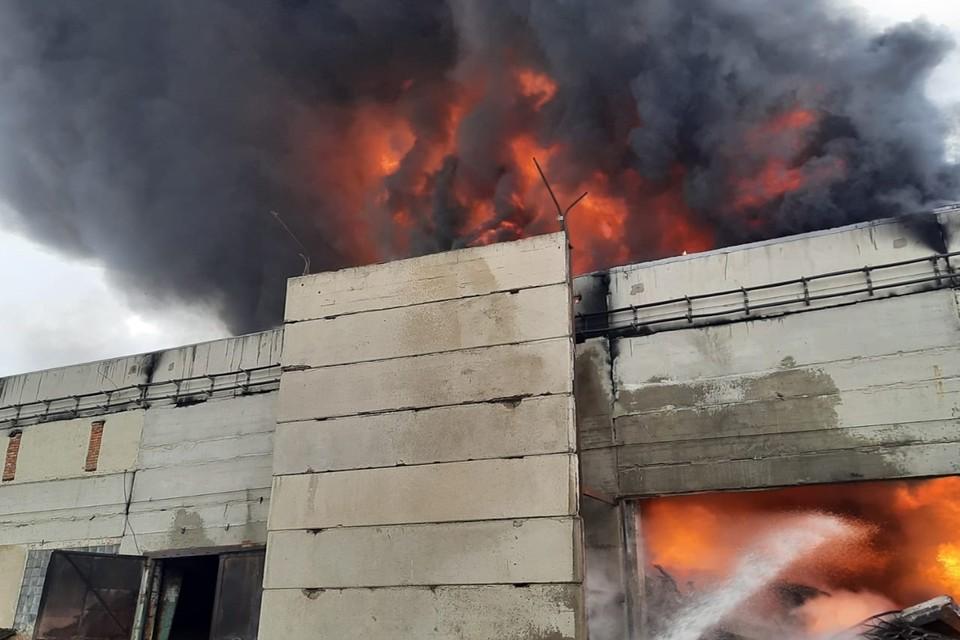 Площадь пожара достигла 900 квадратных метров. Фото: ГУ МЧС по Ростовской области.