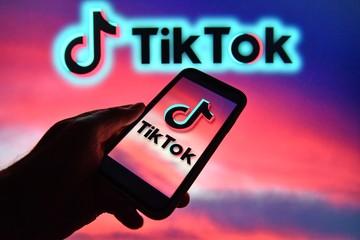 Создан портрет российского пользователя TikTok: держит кошку и играет видеоигры