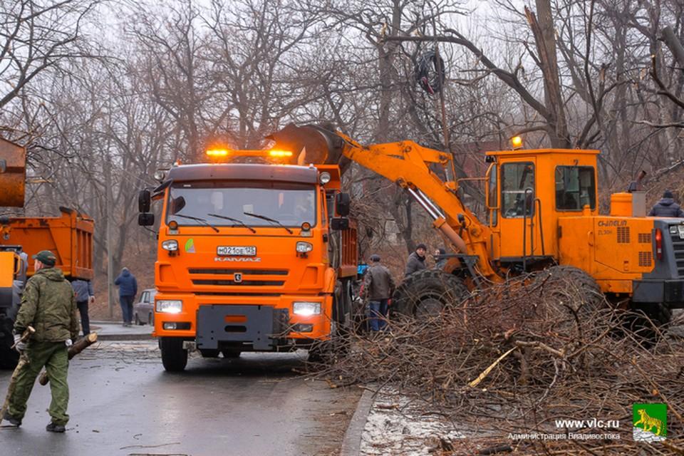 Акция по чистке города продолжается. Фото:Евгений Кулешов/администрация Владивостока