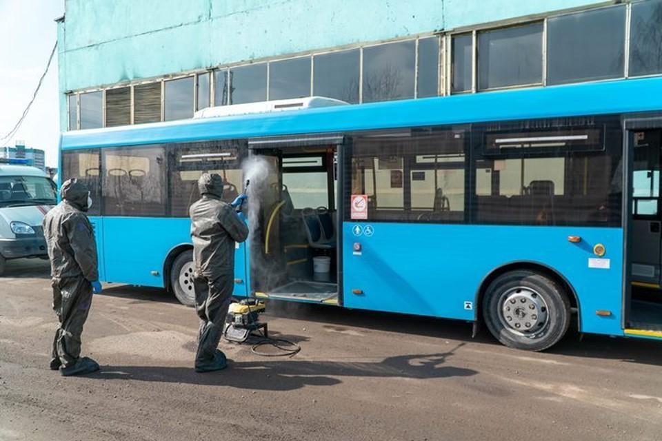 В Брянске продезинфицировали 50 автобусов.