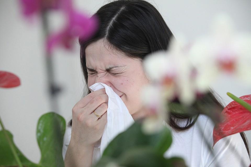 Самый действенный способ – исключить контакт с аллергеном