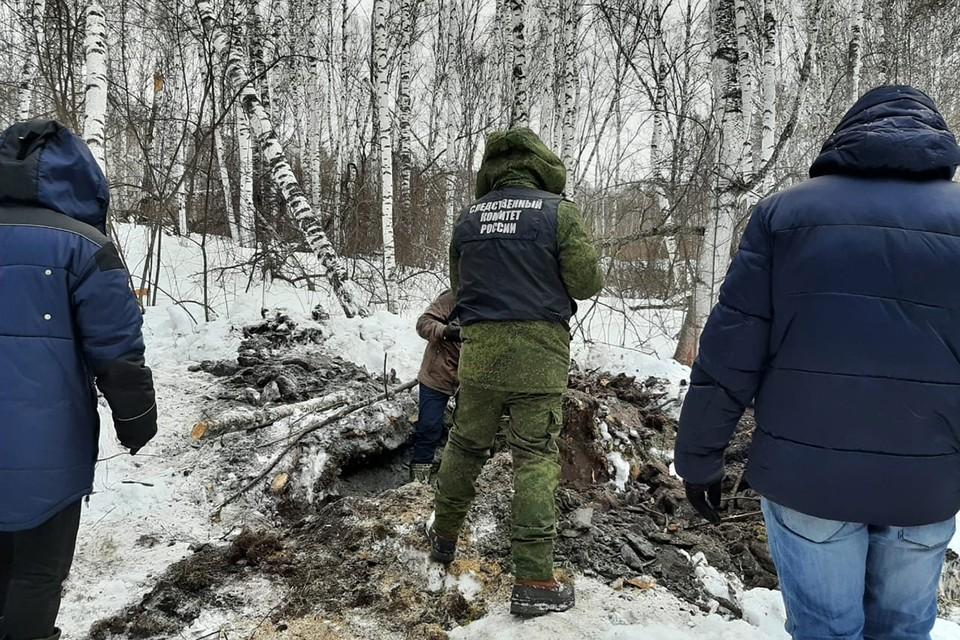 В Красноярске разыскивают тело ребенка, погибшего от укуса собаки полгода назад. Фото: СК Росии
