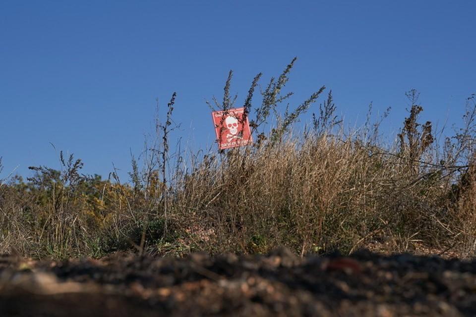 В Донбассе не все минные поля обозначены предупреждающими табличками. Пресс-центр штаба ООС
