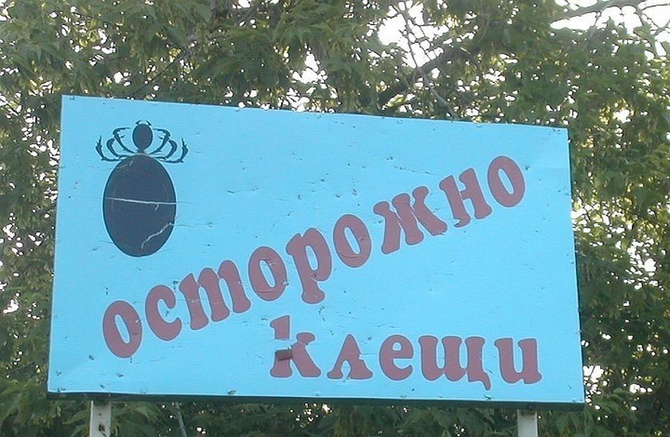 Планируется, что в этом году средний Урал получит около 500 тысяч доз данной вакцины