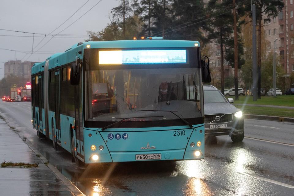 Дополнительные автобусы вышли на линию в Петербурге.