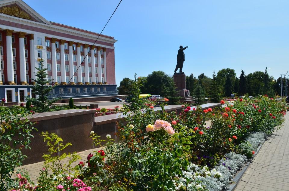 Региональные власти прокомментировали ситуацию со сносном ворот на улице Белинского