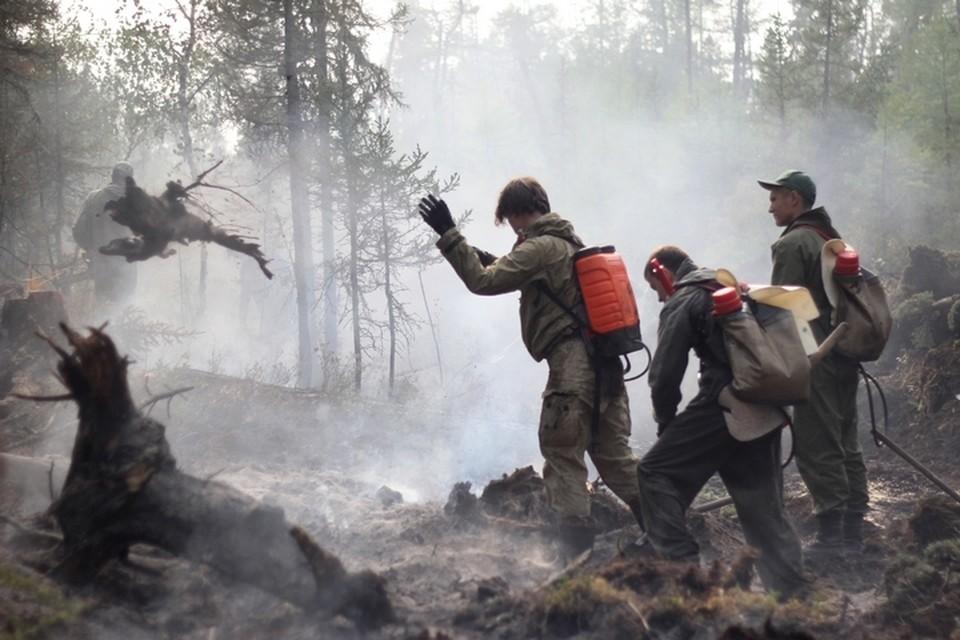 В крае уже действует особый противопожарный режим.
