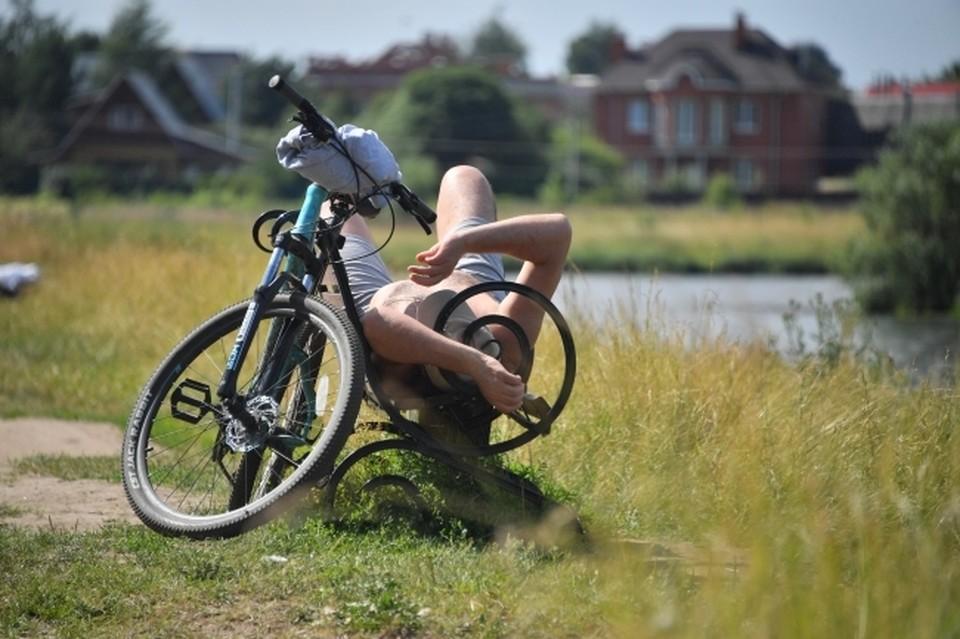 В парке появятся новые лавочки, пешеходные и велодорожки.