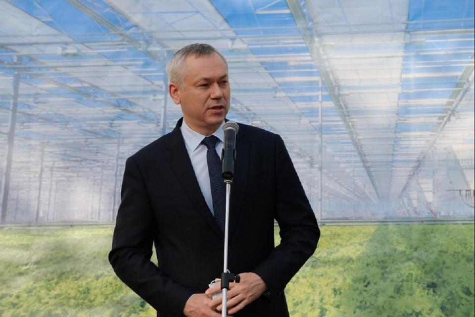 Губернатор Андрей Травников открыл в Новосибирском районе новый тепличный комплекс. Фото: правительство НСО.