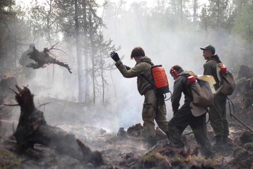 Напомним, что на всей территории региона введен особый противопожарный режим.