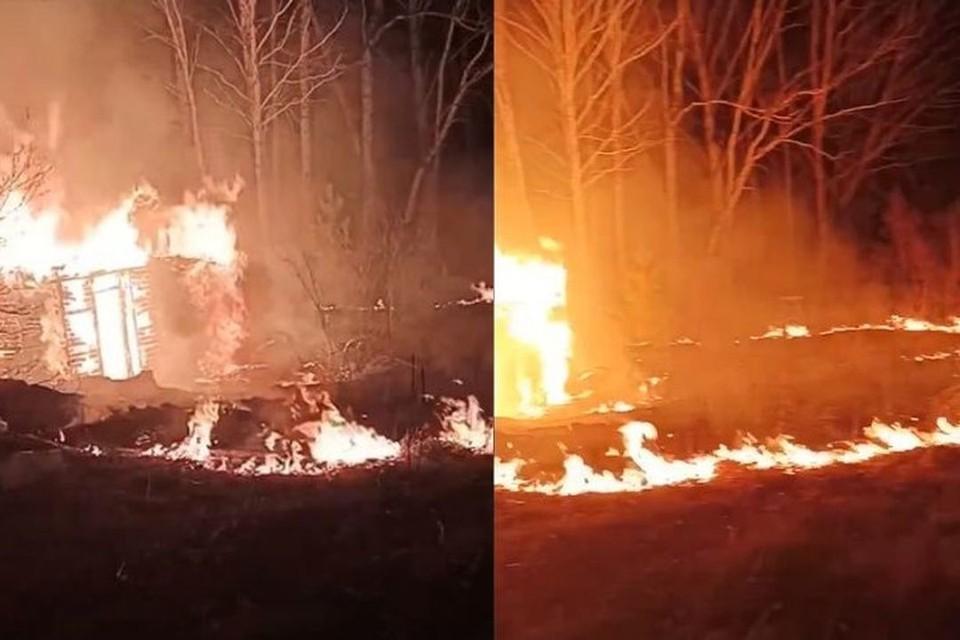 В Новосибирске в СНТ «Тайфун» загорелись несколько дачных домов.