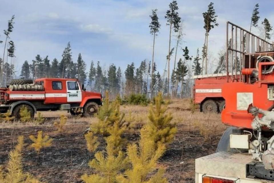 Три лесных пожара потушили в Иркутской области