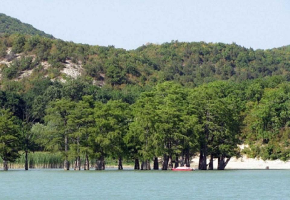 Кипарисовое озеро — уникальная природная достопримечательность в Сукко.