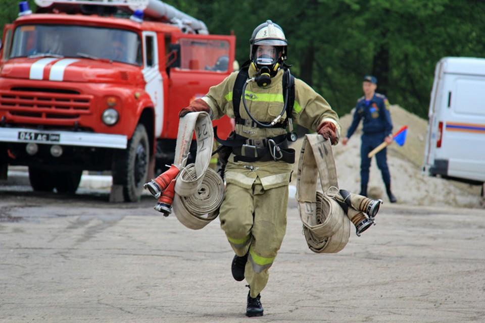 Спасатели МЧС ДНР не допустили распространения пожара. Фото: МЧС ДНР