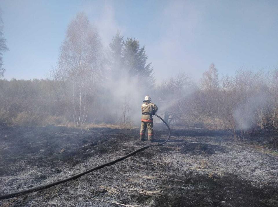 В садоводческом товаришестве «Кедр» сгорели пять домов. Фото: ГУ МЧС России по Омской области