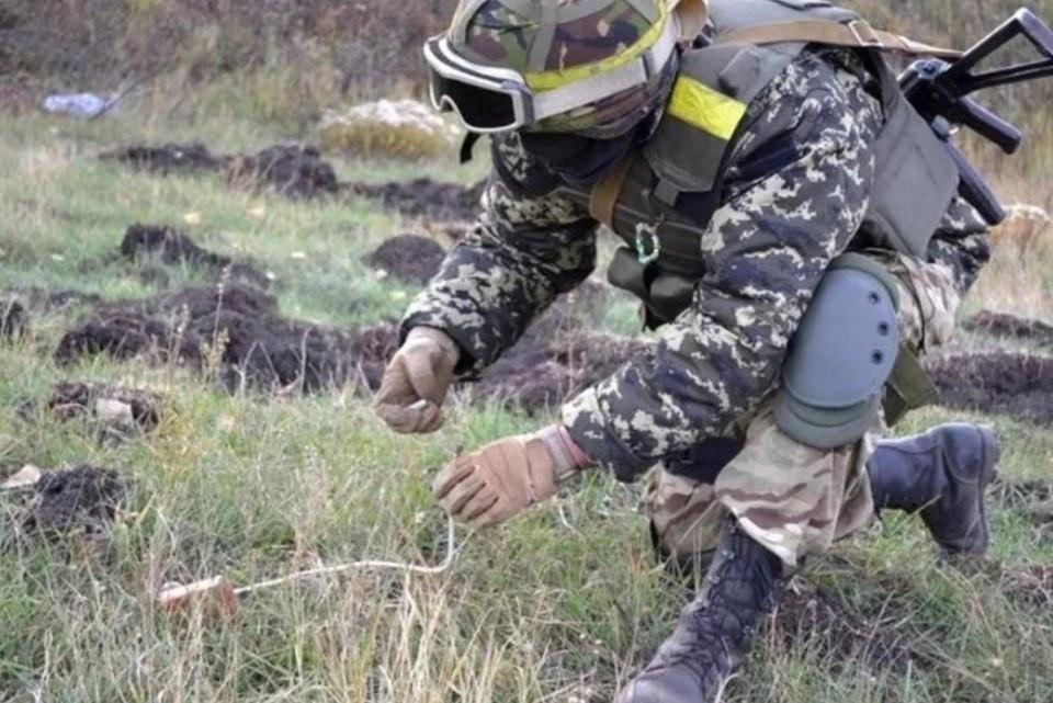 ВСУ продолжают минировать все не попадя. Фото: штаб ООС