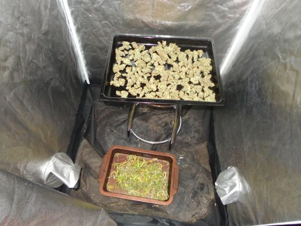 У мужчины дома нашли противень с наркотиками. Фото пресс-службы Приволжского ЛУ МВД России на транспорте