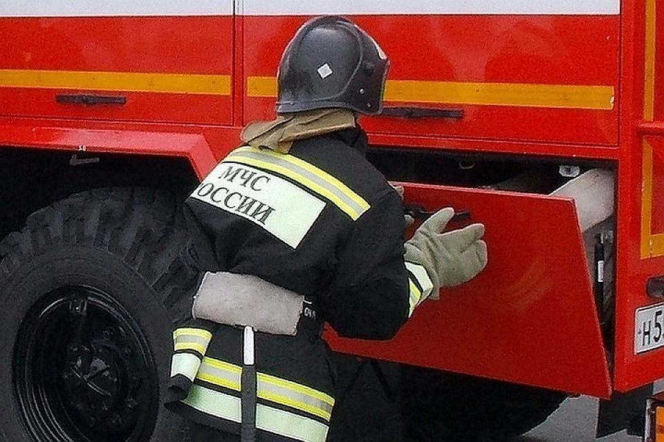 В Тверской области сгорел мусоровоз в Торжке.