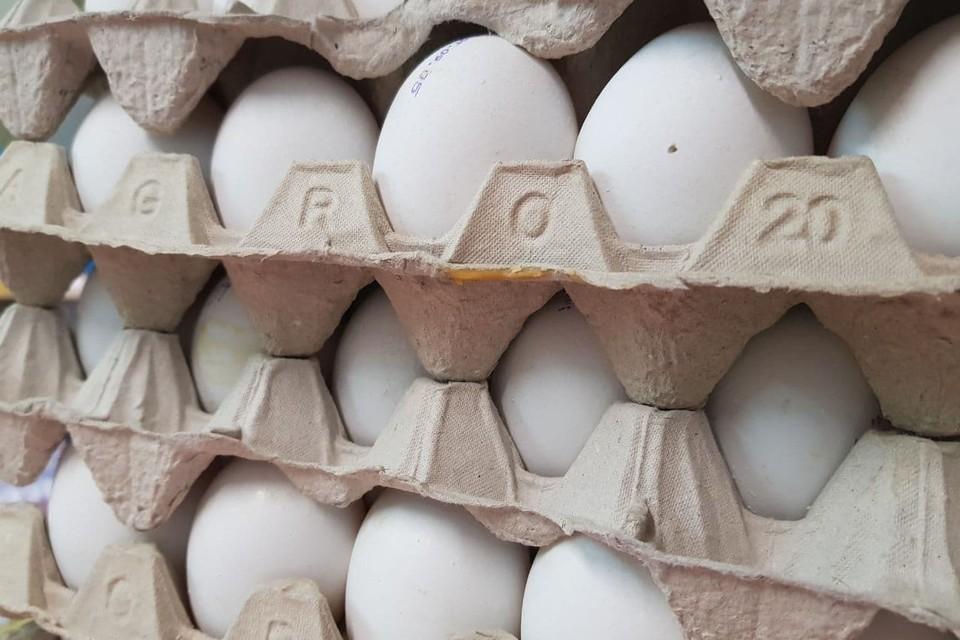Птицефабрика «Островная» прокомментировала рост цен на яйца в регионе