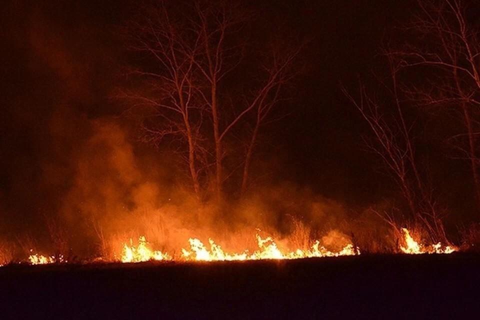 В Тверской области продлили противопожарный режим.