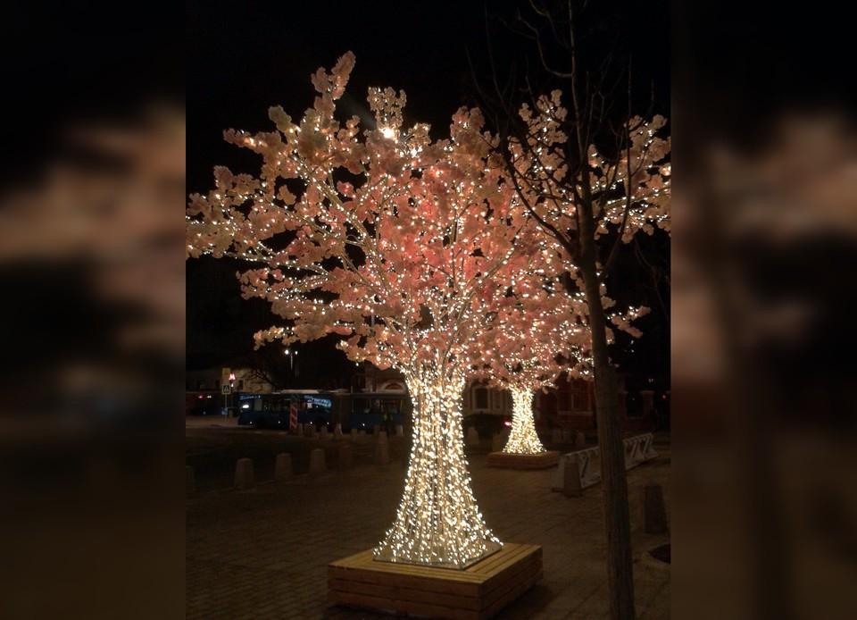 Такое дерево появится в парке на юге города. Фото из закупочной документации на сайте Госзакупок.