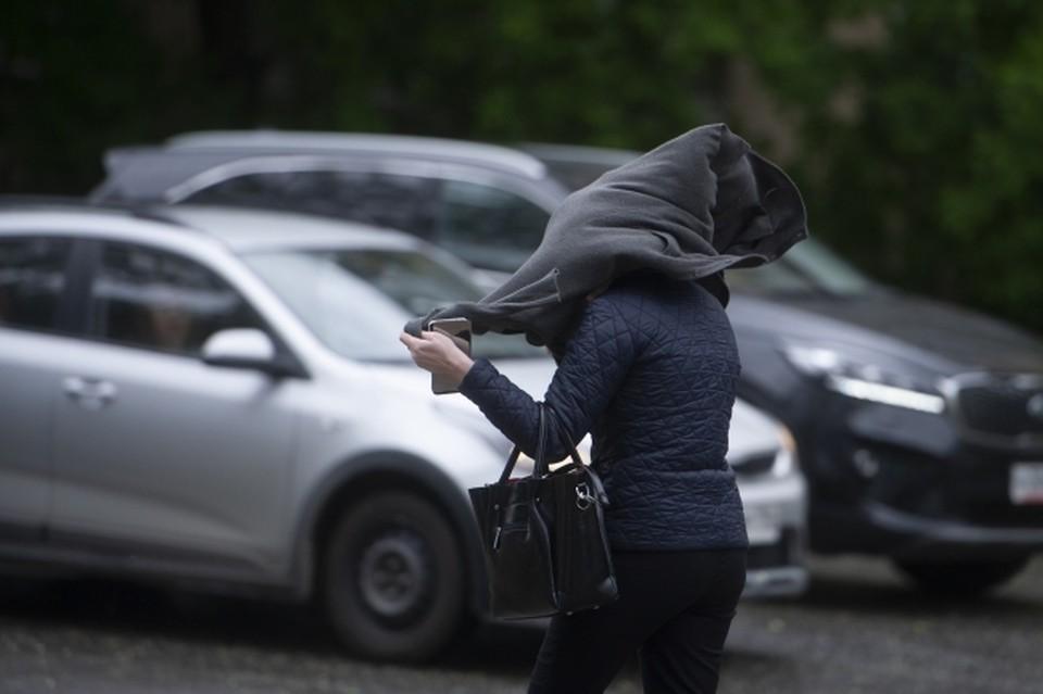 Во время урагана не стоит парковать авто под деревьями.