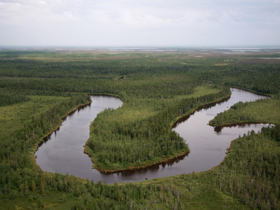 Фото: администрация Пуровского района