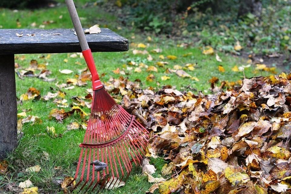 Совмин определил перечень общественных работ по административным статьям. Фото: pixabay.com