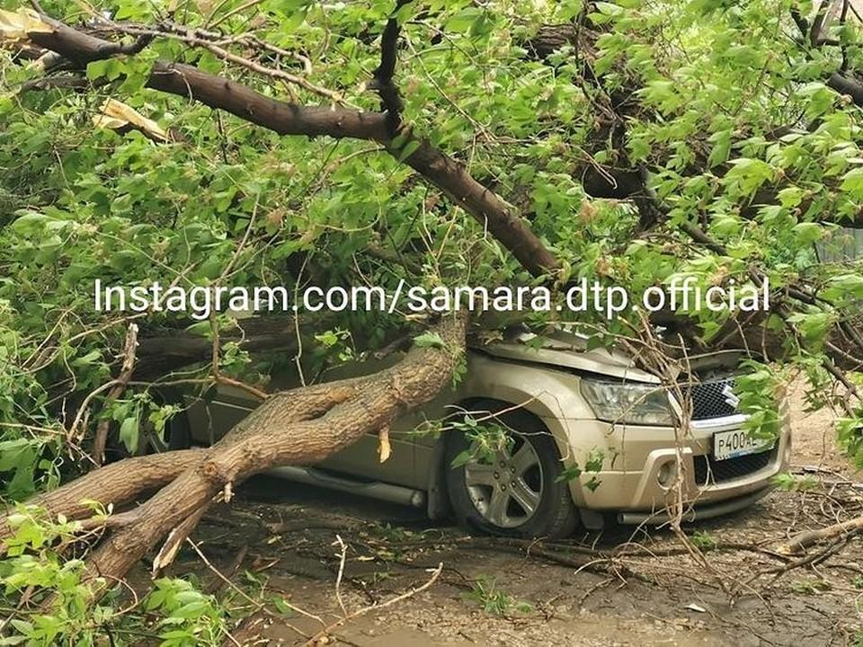 Несколько автолюбителей пострадали из-за сильного ветра