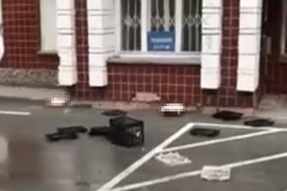 Полицейские ищут женщину, выкинувшую двух котов в окно. Фото:и стоп-кадр