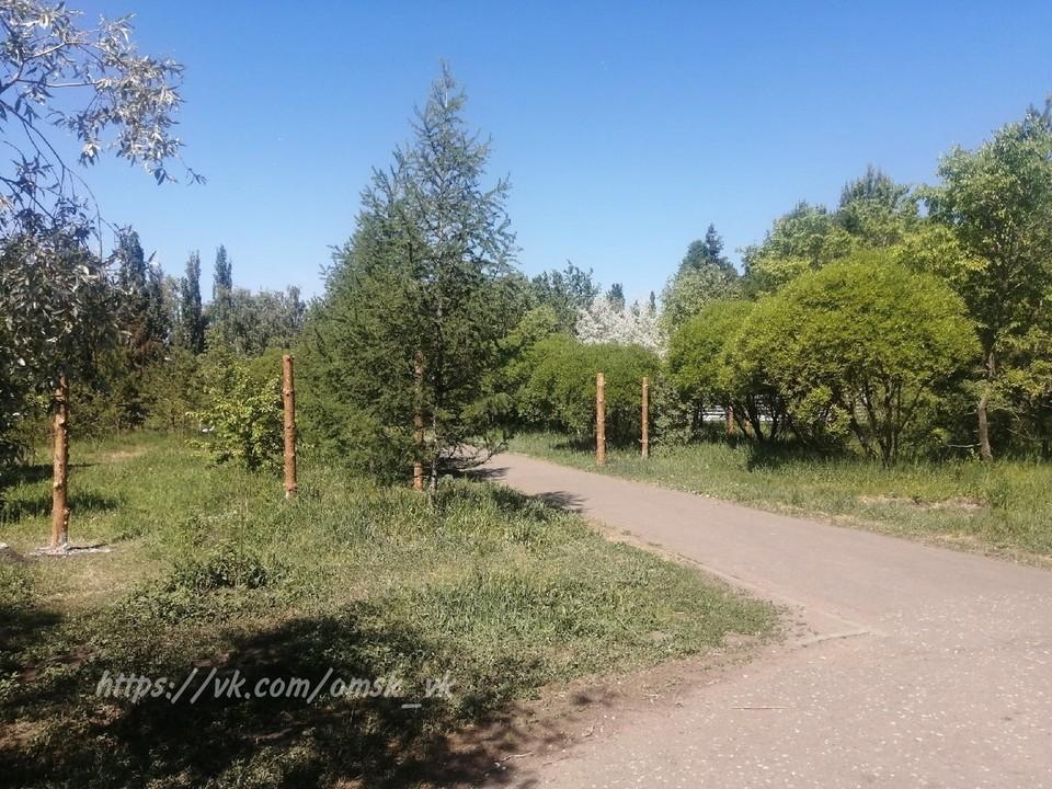 В парке уже вбили столбы, которые, скорее всего, станут основанием для будущего забора вокруг стройки.