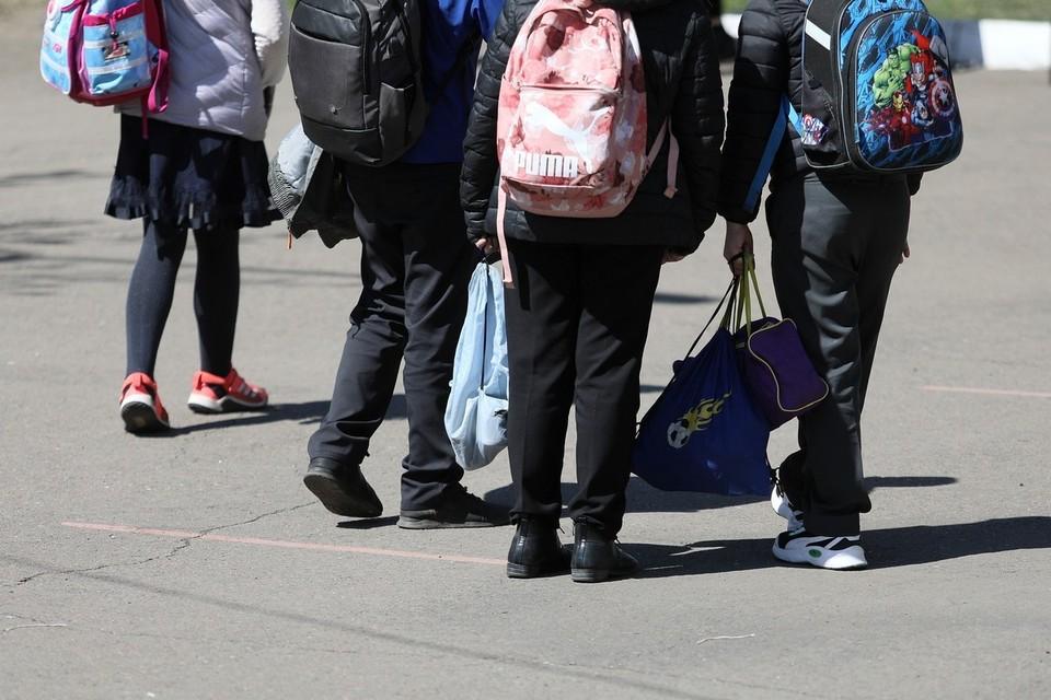 В Красноярском крае уводили директора сельской школы после нападения ученика на одноклассника