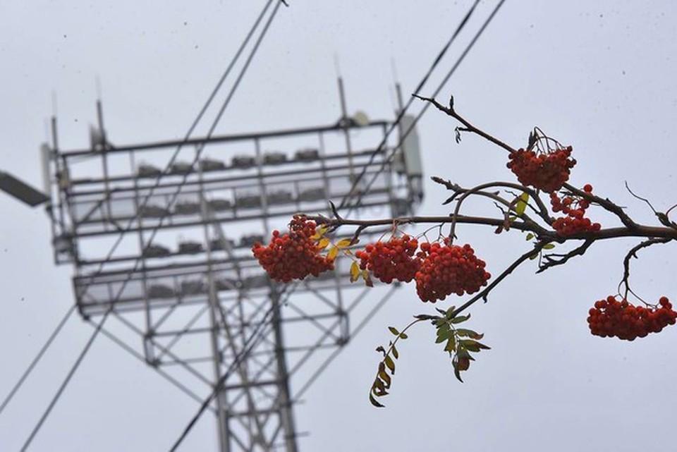 «КП» подготовила список всех домов Белгорода, где не будет электроэнергии вплоть до 11 июня включительно.