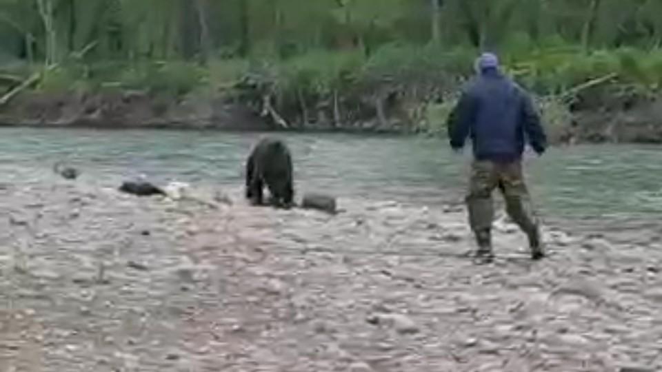 Рыбак в ярости бросил удочку и попытался отогнать медведя камнями, но безрезультатно.