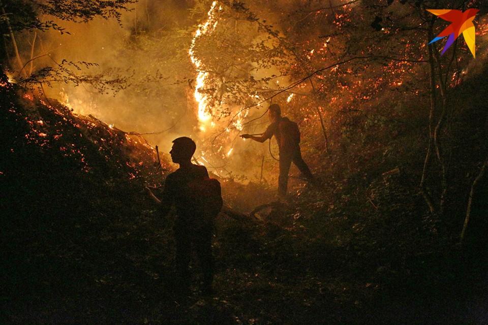 По данным минприроды региона, все последние лесные пожары в Заполярье возникают из-за людей.