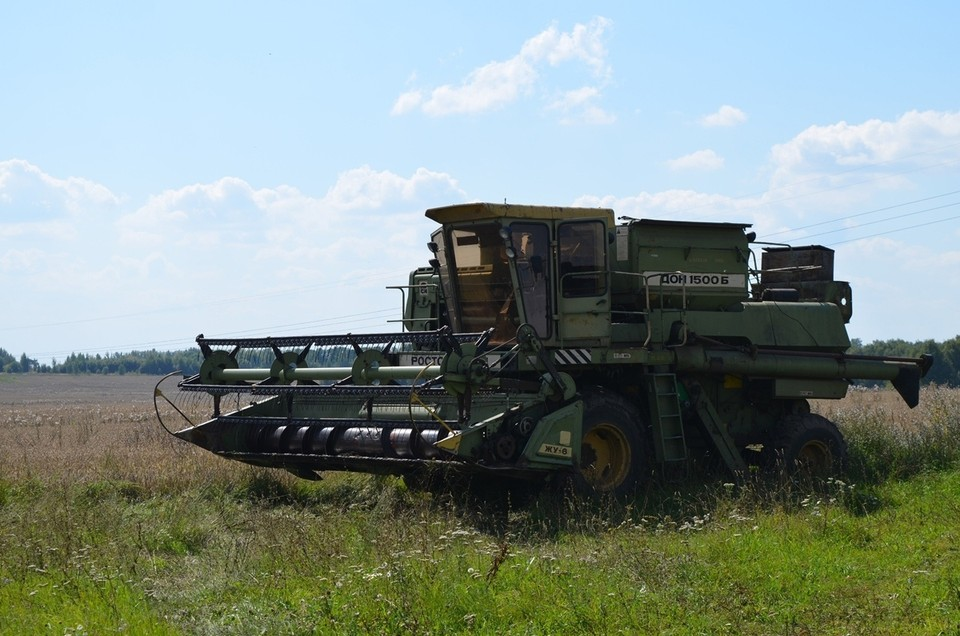 Орловской области выделят деньги на стимулирование выращивания сои и рапса