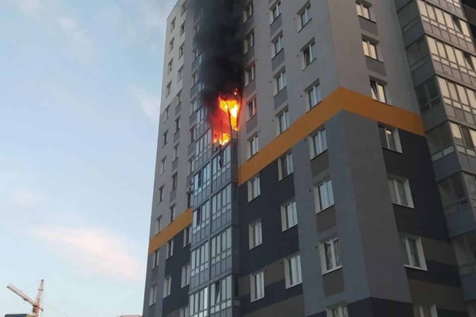 """Пожар уничтожил две квартиры в многоэтажке в поселке Новогорелово под Петербургом. Фото: предоставлено """"КП"""""""