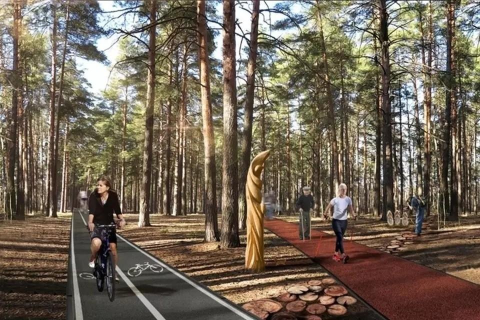 Крупнейшим объектом благоустройства по нацпроекту в 2021 году станет Заельцовский парк.