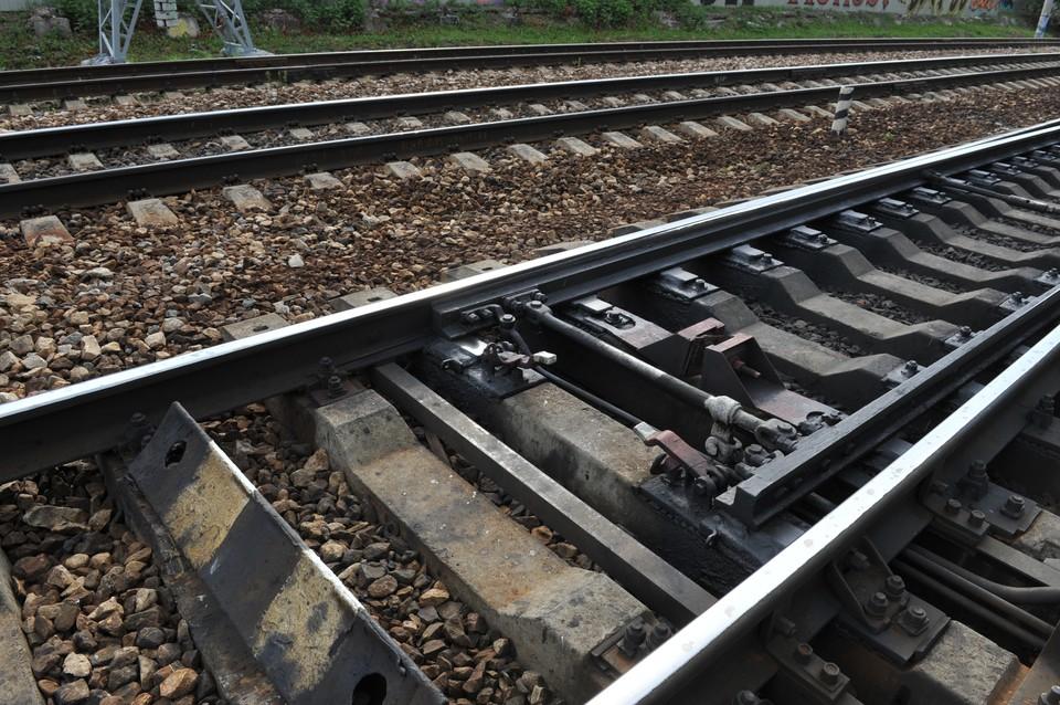 Тело Дмитрия обнаружили недалеко от железной дороги.