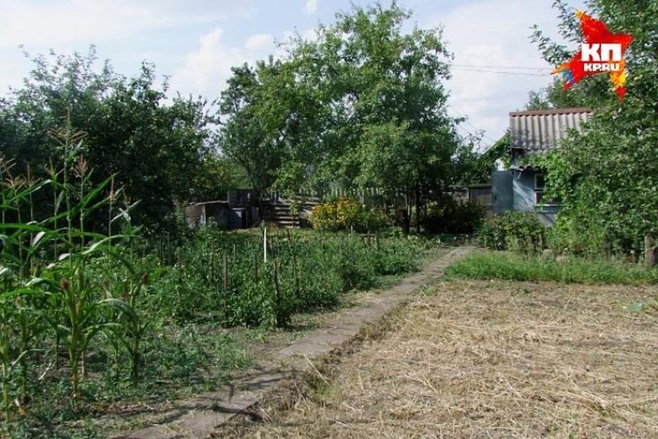 На получение земельных участков принято решений о включении в списки 63 086 заявителей из Татарстана.